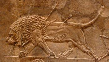 relieve leon palacio asurba oqfk0yp8x15edlr7hmx553348g07usqc2h43c0jads - Asirios